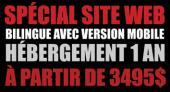 Spécial site web professionnel