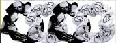 Ensemble de 4 élastique à cheveux Harley-Davidson Willie G Skull Hubcap, Sherbrooke Estrie