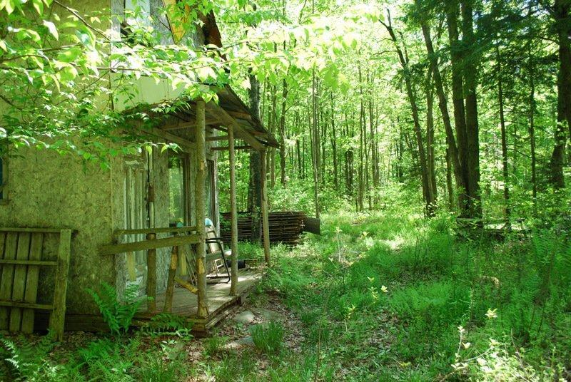 Bois De Chasse A Vendre - Cleveland, estrie,superbe terreà boisà vendre 62 arp, grange, 2 camps de chasse, ruisseau